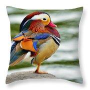 Mandarin Duck Posing Throw Pillow