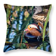 Mandarin Duck Reflections Throw Pillow