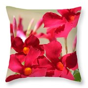 Mandevilla Named Sun Parasol Crimson Throw Pillow
