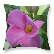 Mandevilla Pink 2013 Throw Pillow
