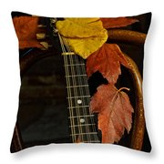 Mandolin Autumn 1 Throw Pillow