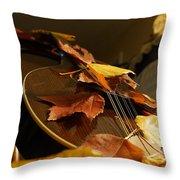 Mandolin Autumn 3 Throw Pillow
