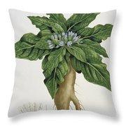 Mandragora Officinarum Throw Pillow by LFJ Hoquart