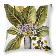 Mandrake And Buttercup Throw Pillow