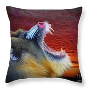 Mandrill Roaring At The End Of A Day  Throw Pillow