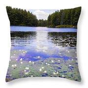 Manet's Inspiration Throw Pillow