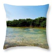 Mangrove @ Safehaven Sound Throw Pillow