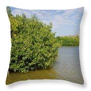 Mangrove Forest Throw Pillow