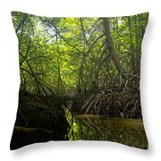 mangrove forest in Costa Rica 1 Throw Pillow