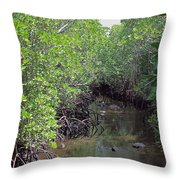 Mangrove Forest Throw Pillow by Tony Murtagh