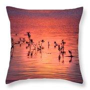 Mangrove Paradise Throw Pillow