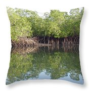Mangrove Refelections Throw Pillow