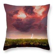 Mangrove Storm Throw Pillow