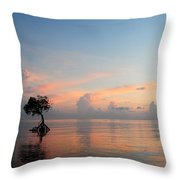 Mangrove Tree In Water At Sunrise Throw Pillow