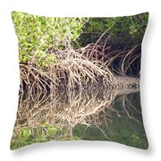 Mangroves In The Gambia Throw Pillow