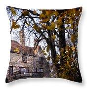 Manor Throw Pillow