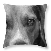 Man's Best Friend In Black And White Throw Pillow
