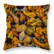 Many Colorful Gourds Throw Pillow