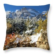 Many Glacier Colors Throw Pillow