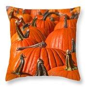 Many Pumpkins In A Row Art Prints Throw Pillow