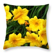 Many Summer Lillies Throw Pillow