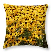Many Yellow Blooms Throw Pillow