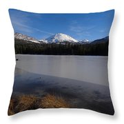 Manzanita Winter Beauty Throw Pillow