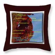 Wicklow Places Map Throw Pillow