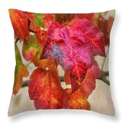 Maple Colors Throw Pillow