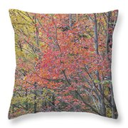 Maple Corner Foliage Throw Pillow