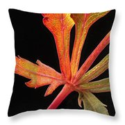 Maple Leaf Detail Throw Pillow