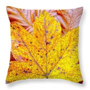 Maple Leaf In Fall Throw Pillow