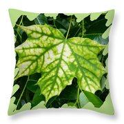 Maple Leaf In The Laurel Throw Pillow