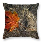 Maple Leaf - Playful Sunlight Patterns Throw Pillow