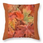Maple Leaf Rag Throw Pillow