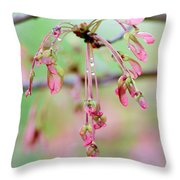 Maple Leaf Seed Pods   Throw Pillow