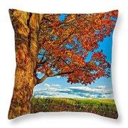 Maple Moon Throw Pillow