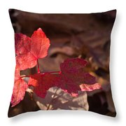 Maple Morning Throw Pillow