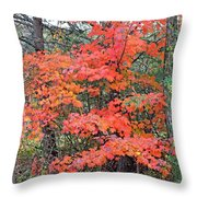 Maple Rush In The Fall Throw Pillow