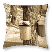 Maple Sap Buckets Throw Pillow