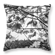 Maple Sunset - Paint Bw Throw Pillow