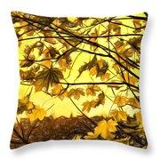 Maple Sunset - Paint Throw Pillow