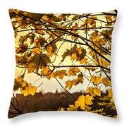 Maple Sunset Throw Pillow