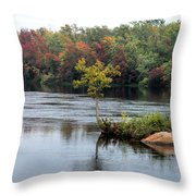 Maple Tree On A Rocky Island Throw Pillow