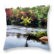Maple Tree On A Rocky Island - V2 Throw Pillow