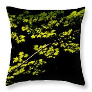 Maples Against Black Throw Pillow
