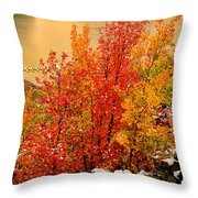 Maples Along The Palisades Throw Pillow