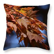 Maples In Spring 2013 Throw Pillow