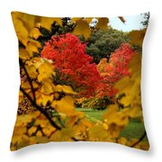 Maples In View Throw Pillow