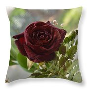 Marasmic Charm Throw Pillow